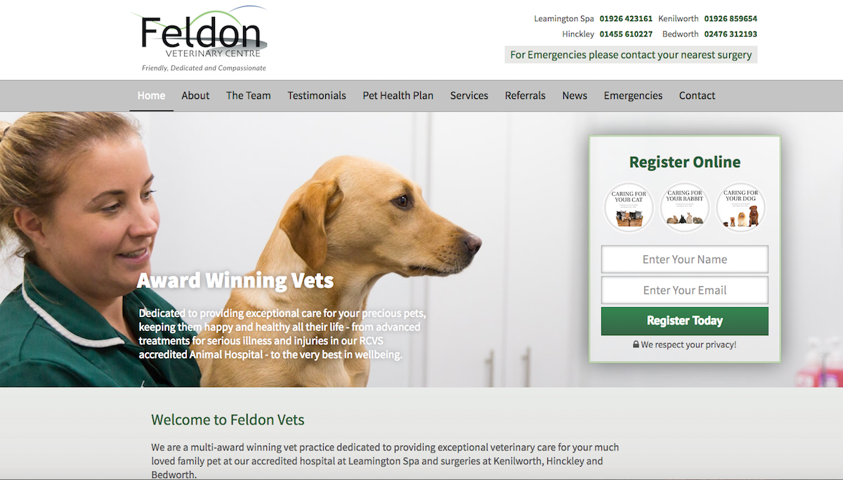 Feldon Vets website